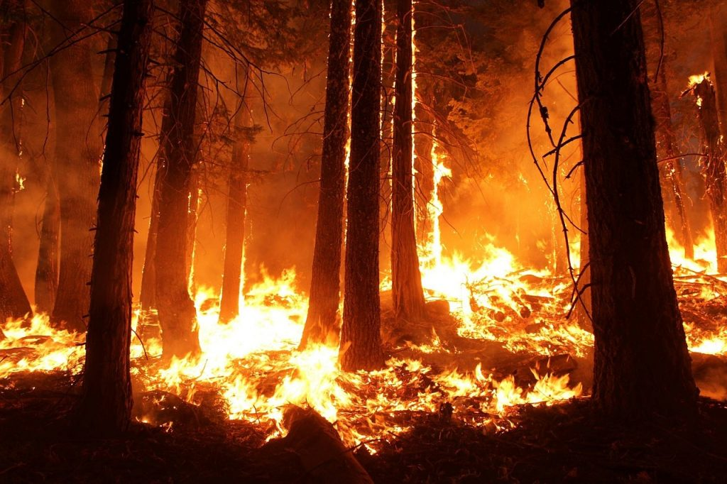 Galicia arde en llamas